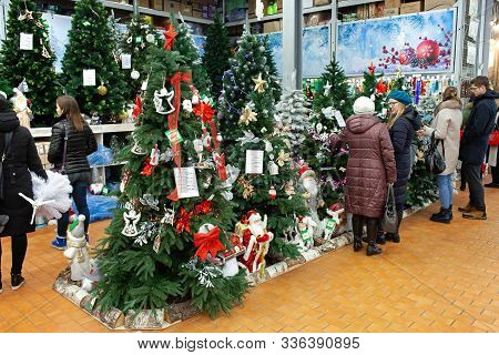 Minsk, Belarus - November 23, 2019: People Selecting Christmas Tree. Shopping At The Supermarket For