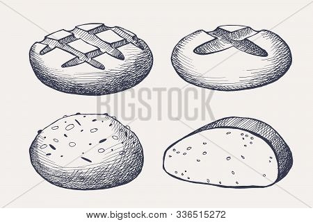 Collection Of Drawn Loaves Of Bread. A Set Of Bakery Products. Can Be Used For Logo, Menu, Banner, L