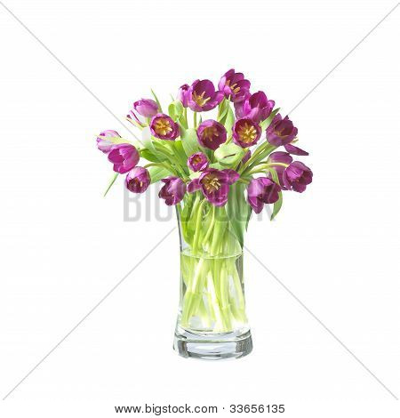 Beautifil Tulips  Flowers In A Vase Isolated On White With Clipping Path