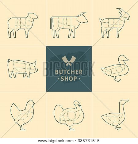 Set A Schematic View Of Animals For The Butcher Shop. Cow And Pork, Cattle And Pig, Chicken And Lamb