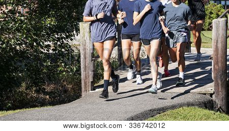 A Group Of High School Girls Training Together For Cross Country Running In A Local Park On A Tar Pa