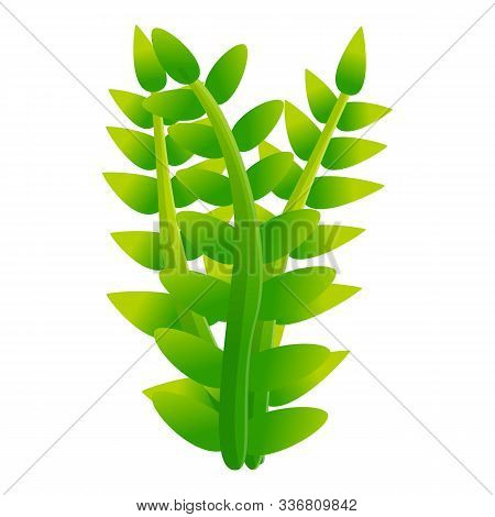 Underwater Plant Icon. Cartoon Of Underwater Plant Vector Icon For Web Design Isolated On White Back
