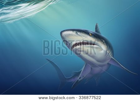 Reef Shark On Depth Realistic Background Illustration. A Large Reef Shark Opened Its Mouth And Swims
