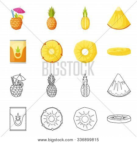 Vector Illustration Of Nutrition And Dietary Symbol. Set Of Nutrition And Refreshment Stock Symbol F