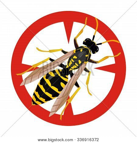 Insect Wasp Vector Icon.cartoon Vector Icon Isolated On White Background Insect Wasp .