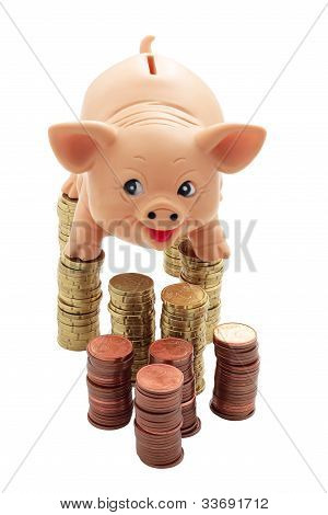 Porky On Columns Of Coins