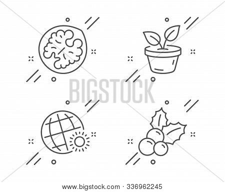 Walnut, World Weather And Leaves Line Icons Set. Christmas Holly Sign. Vegetarian Food, Sunny, Grow