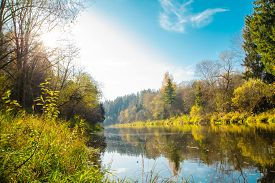 Autumn Water Landscape With Bright Colorful Yellow Leaves In The Vitebsk Region, Belarus.autumn Rive