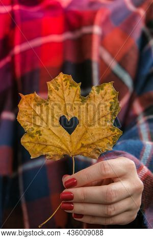 Stylish Red Female Nails. Fall Leaf With Hole In Heart Shape In Hands. Modern Beautiful Manicure. Au