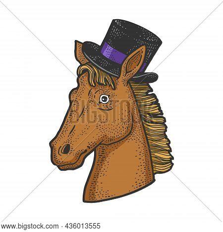 Horse In The Cylinder Hat Color Sketch Engraving Vector Illustration. T-shirt Apparel Print Design.
