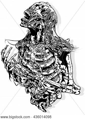 Horror Skeleton Drawing Isolated On White Background - Scary Design Element For Halloween Or Metal M