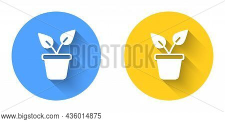White Plant In Pot Icon Isolated With Long Shadow Background. Plant Growing In A Pot. Potted Plant S