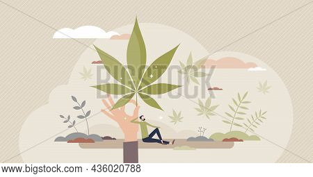 Using Hemp As Herbal Treatment For Mental Or Physical Health Tiny Person Concept. Medical Marijuana