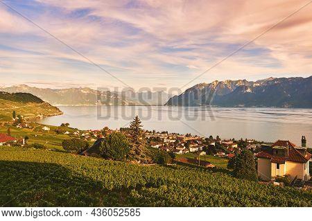 Beautiful Landscape Of Lavaux Vineyards, Cully, Switzerland