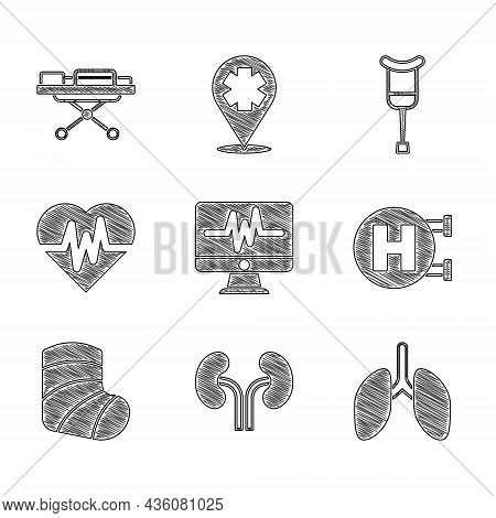 Set Monitor With Cardiogram, Human Kidneys, Lungs, Hospital Signboard, Gypsum, Heart Rate, Crutch Cr