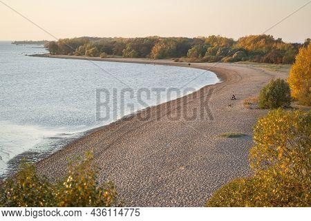 Aerial View Of Lake Coastline At Sunrise. Coastal Autumn Forest Along The Sandy Beach Of Baltic Sea