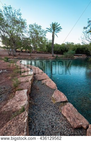 A Huge Pool Of Clear Spring Water Against A Palm Tree Background, In The Valley Of The Springs - Isr
