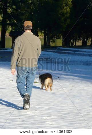 Dog Walk In Winter