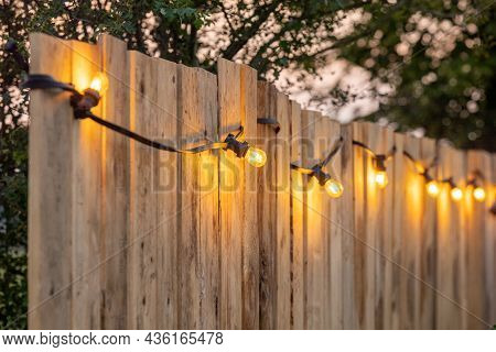 Cosy Light Bulbs Lined Up In A Row, Against A Wooden Garden Fence. There Are Some Green Bushes And G