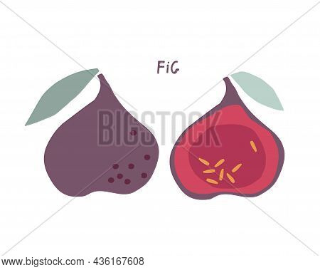 Abstract Fig Fruit With Leaves, Childish Hand Drawn Doodle Sketch Isolated On White Background. Flat