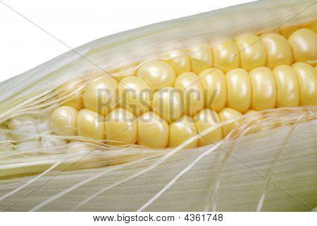 Closeup Corn Husk