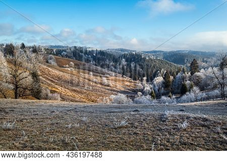Winter Coming. Picturesque Moody Morning Scene In Late Autumn Mountain Countryside With Hoarfrost On