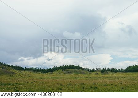Beautiful Green Scenery With Forest Edge On Hills Under Cloudy Sky. Atmospheric Landscape With Fores