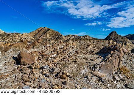 Dragon Tail, Colas De Dragon In Tabernas Desert In Almeria, Spain. Geological Erosion Called Tubirti