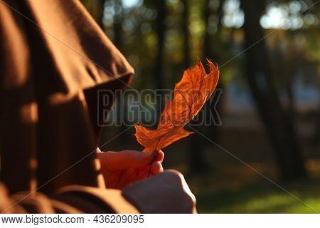 Female Hands Holding Oak Tree Leaf. Bright Stylish Woman In Orange Coat Walking In October Park. Dre