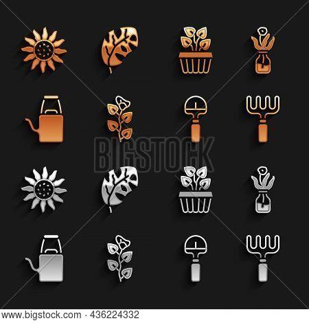 Set Ivy Branch, Flower In Glass Bottle, Garden Rake, Shovel, Watering Can, Indoor Plant Ivy Pot, And