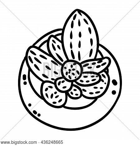 Hygge Potted Cactus Plant Doodle Top View. Comic Style Cozy Lagom Scandinavian Style Succulent Isola