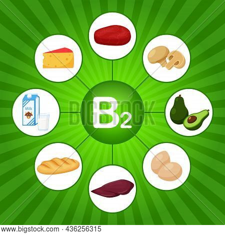 A Square Poster With Food Products Containing Vitamin B2. Riboflavin. Medicine, Diet, Healthy Eating