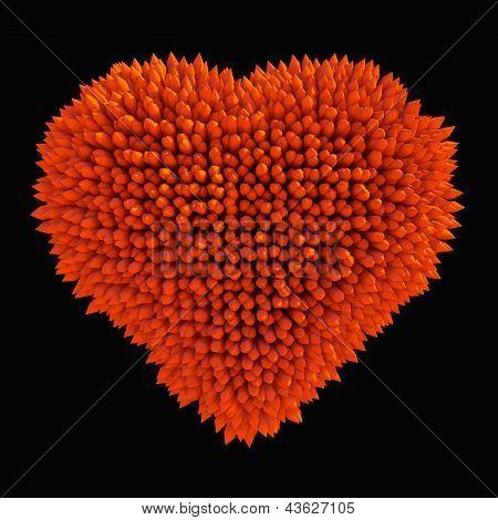 Dangerous Love: Sharp Acidotus Heart Shape Isolated