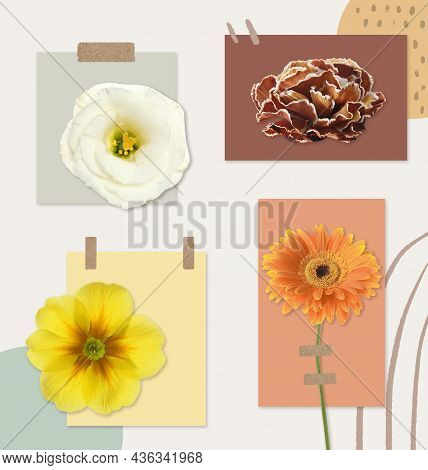 Multicolor Flowers And Cards Of Similar Shades On Light Background, Collage. Montessori Method