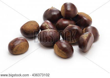 Japanese chestnut called Riheiguri isolated on white background