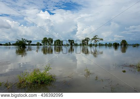 Flooding Rice Paddies In Rural Thailand As Rainstorm Tien Mu Has Swept Through Thailand And Caused H