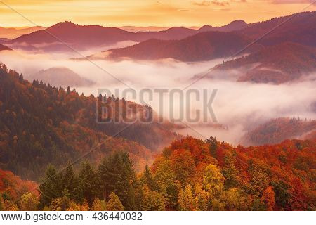 Misty Foggy Autumn Mountain Landscape With Fir Forest And Copyspace In Vintage Retro Hipster Style..