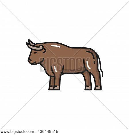 Cow Bull Buffalo Farm Cow Ox, Taurus Sign Isolated Flat Cartoon Icon. Vector Traditional Spain And P