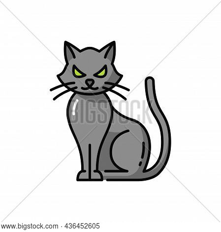 Halloween Pet Witch Black Cat Isolate Outline Icon. Vector Witch Pet, Scary Starring Kitty With Long