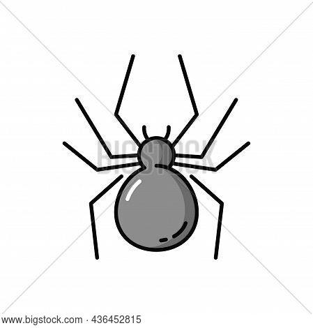 Spider Halloween Holiday Symbol Isolated Arachnid Flat Line Icon. Vector Poisonous Black Widow Spinn