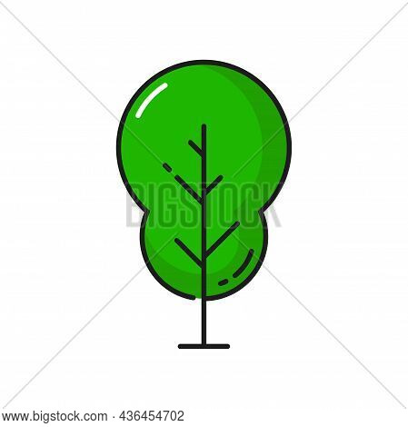 Green Exotic Tree Isolated Linear Icon. Vector Environment Protection And Save Earth Object, Care Of
