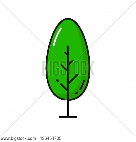 Green Tree Isolated Thin Line Icon. Vector Environment Protection, Save Earth, Natural Plant Outline