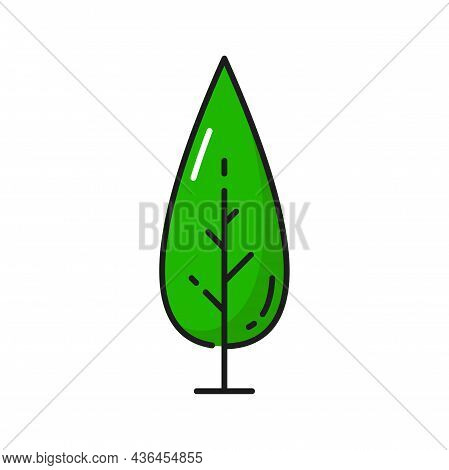 Tree With Branches And Green Leaves Isolated Thin Line Flat Cartoon Icon. Vector Botanical Natural P