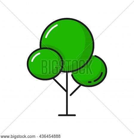 Fairy Tree With Crown In Shape Of Circles Isolated Outline Forest Plant. Vector Flat Cartoon Wood Wi