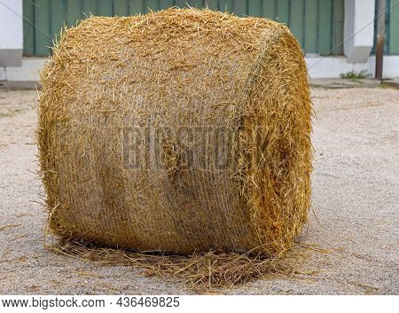 One Big Hay Bale Straw Silage At Farm