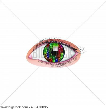 Beautiful Realistic Human Eye With Colorful Pupil And Long Eyelashes Isolated On White Background, V