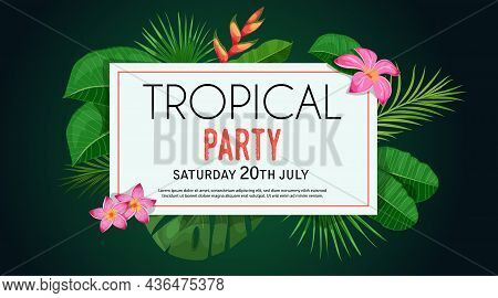 Tropical Banner Design Template. Dark Green Theme With White Frame. Palm, Monstera Leaves, Tropical