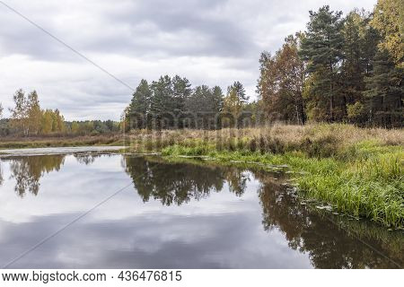 Autumn Landscape With A Small Forest River. Cloudy Weather In The Forest Idyllic Autumn Landscape. C