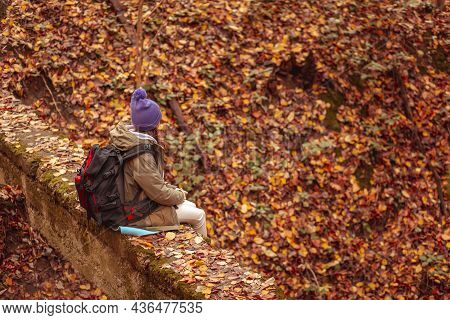 High Angle View Of Active Woman Relaxing Outdoors On A Sunny Autumn Day, Sitting In The Forest While