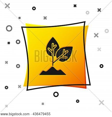 Black Plant Icon Isolated On White Background. Seed And Seedling. Leaves Sign. Leaf Nature. Yellow S